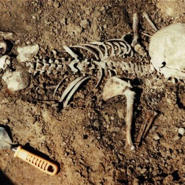 Το σπίτι με τους σκελετούς